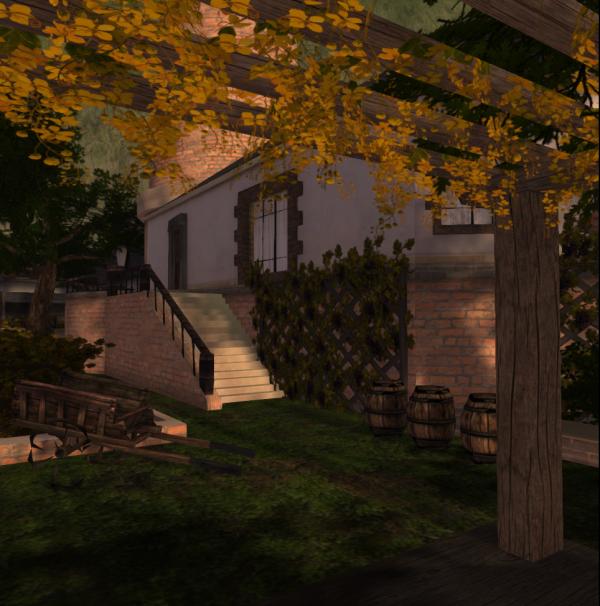wineyard_001